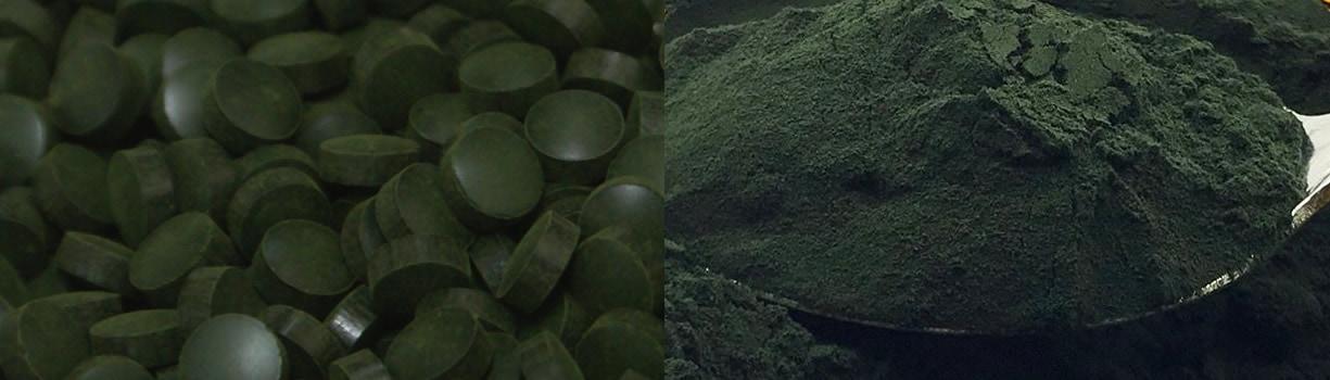 PlantPills Spirulina tablets and powder