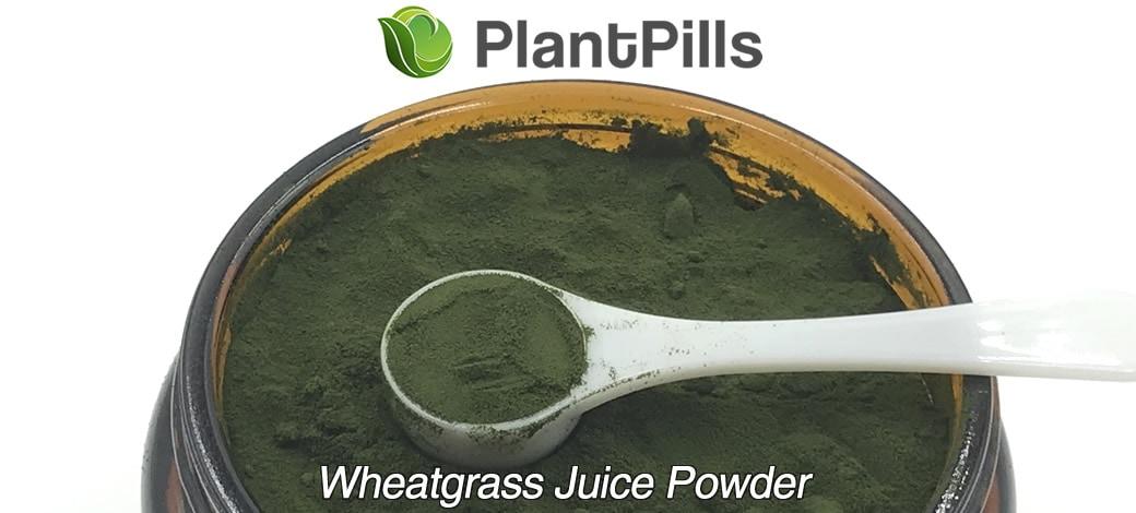 plantpills wheatgrass juice powder