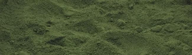 Raw Field Grown Freeze Dried Kamut® Wheatgrass Juice Powder